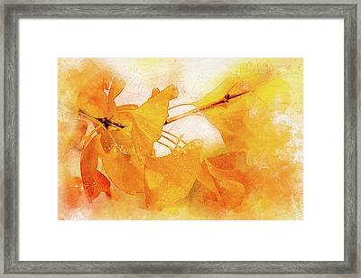 Ginkgo Abstraction Framed Print