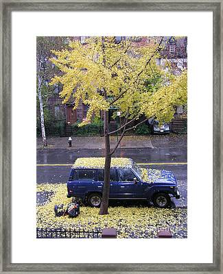 Framed Print featuring the photograph Ginkgo In Fall by Erik Falkensteen