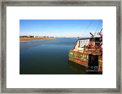Gipper On Long Beach Island Framed Print by John Rizzuto