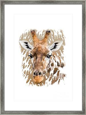 Giraffe Clothing And Wall Art Framed Print by Linsey Williams