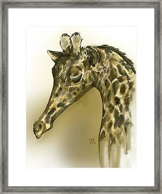 Giraffe Contemplation Framed Print