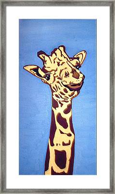 Giraffe Framed Print by Darren Stein