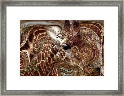 Giraffe Dreams No. 1 Framed Print