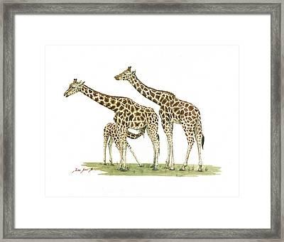 Giraffe Family Framed Print by Juan Bosco
