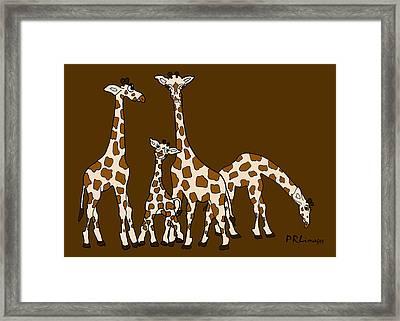 Giraffe Family Portrait Brown Background Framed Print