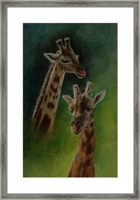 Giraffe Giraffe Framed Print by Lynn Hughes