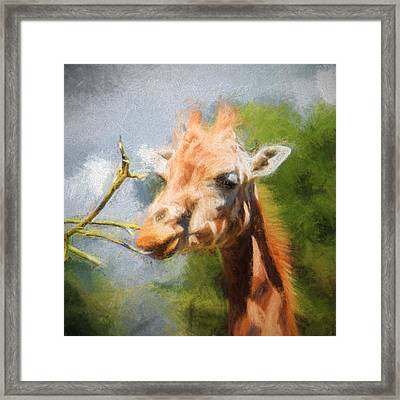 Giraffe Impression Framed Print by Sharon Lisa Clarke