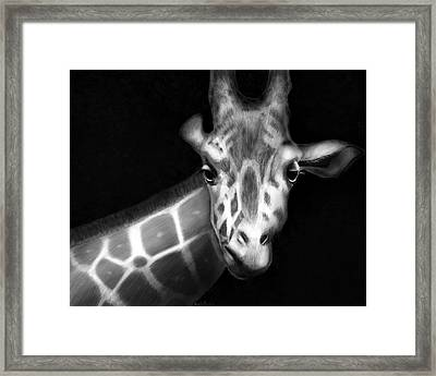 Framed Print featuring the digital art Giraffe In Black And White by Angela Murdock