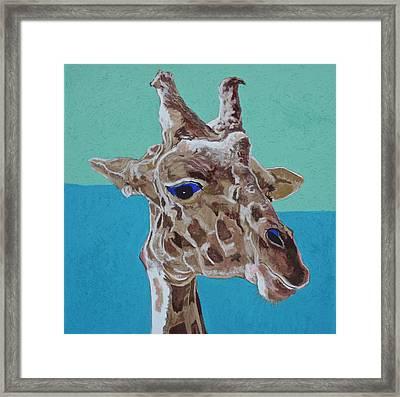 Giraffe Framed Print by Jamie Downs