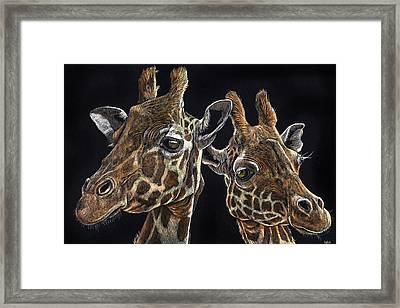 Giraffe Pair Framed Print