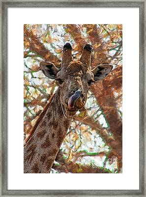 Giraffe Says Yum Framed Print