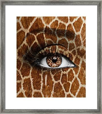 Giraffe Framed Print by Yosi Cupano