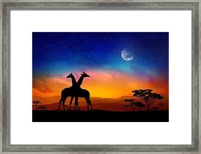 Giraffes Can Dance Framed Print by Iryna Goodall