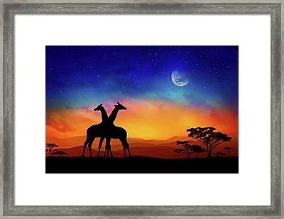 Giraffes Can Dance Framed Print