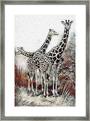 Framed Print featuring the digital art Giraffes by Pennie McCracken
