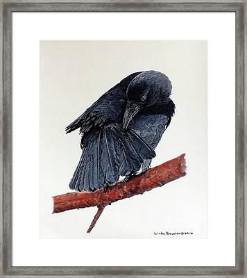 Girdie Framed Print by Linda Becker