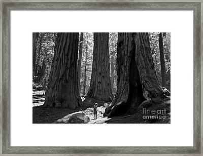 Girl And Giants Framed Print