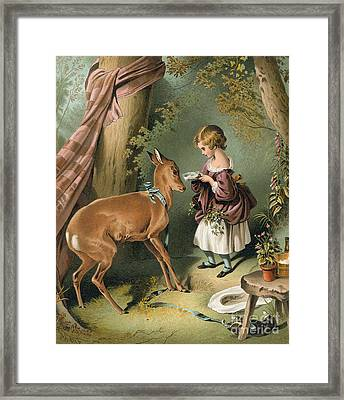 Girl Feeding A Deer Framed Print