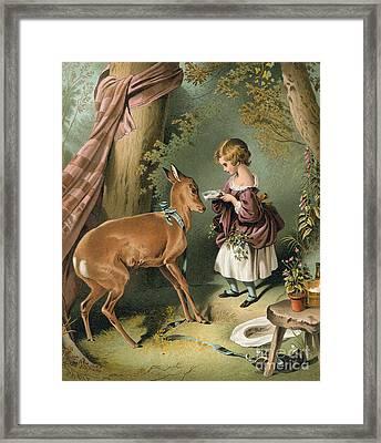 Girl Feeding A Deer Framed Print by Sir Edwin Landseer