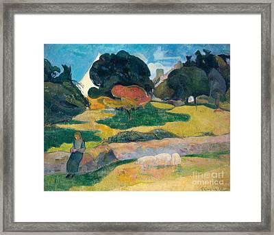 Girl Herding Pigs Framed Print by Paul Gauguin