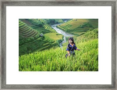 Girl In The Terrace Rice Farm Framed Print