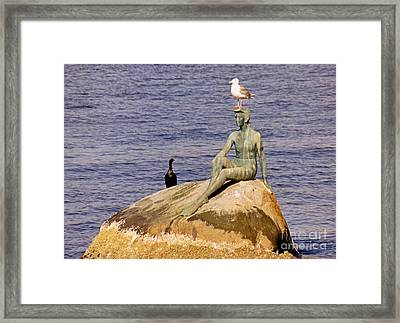 Girl In Wetsuit Stanley Park Vancouver Framed Print by John Malone