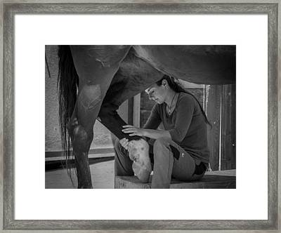 Girl Treats Horse Framed Print by Sebastian Graf