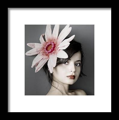 Pink Daisy Framed Prints
