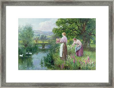 Girls Collecting Flowers Framed Print