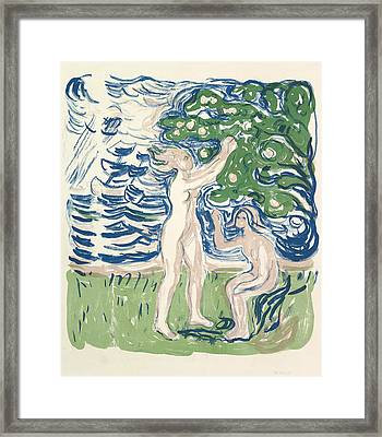 Girls Picking Apples Framed Print by Edvard Munch