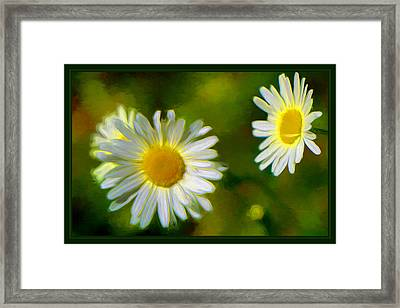 Give Me Daisy In Color Framed Print