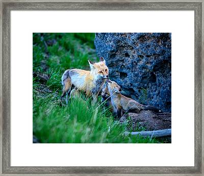 Give Mommy A Kiss Framed Print
