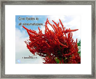 Give Thanks Framed Print by Judi Saunders