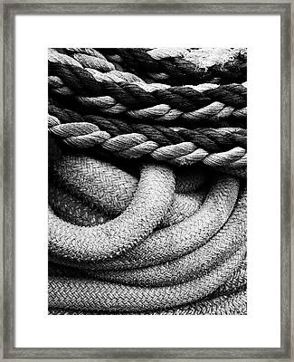 Give Them Some Rope Framed Print by Skip Hunt