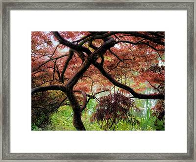 Giverny Gardens Framed Print by Jim Hill