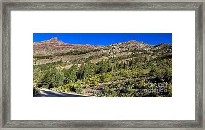 Glacier Hillside Framed Print by Robert Bales