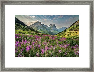 Glacier Meadow Framed Print
