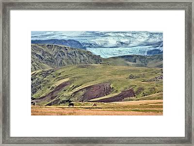 Glacier Mountains Meadows Horses Framed Print by David Halperin