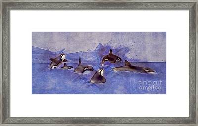 Glacier Whales Framed Print by Methune Hively