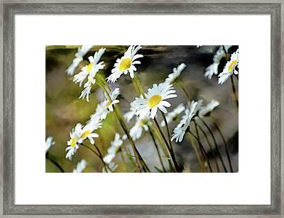 Glacier Wildflowers Framed Print by Marty Koch