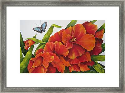 Glad To  Meet You Framed Print by Cheryl Bannister