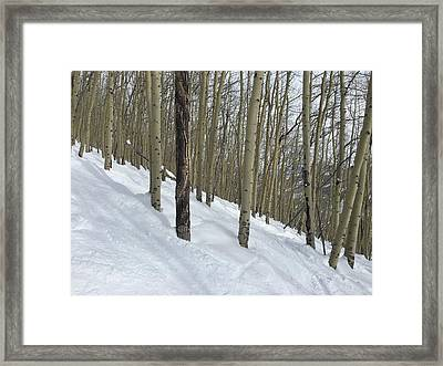 Gladed Run Framed Print