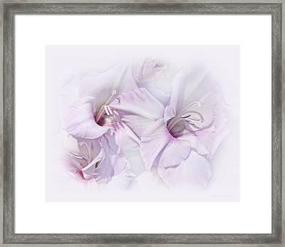 Gladiola Flowers Lavender Pastel Framed Print by Jennie Marie Schell
