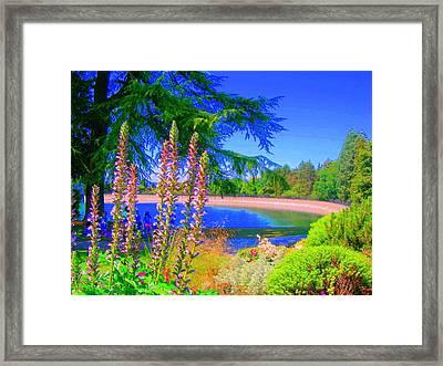 Hollyhock Garden Framed Print