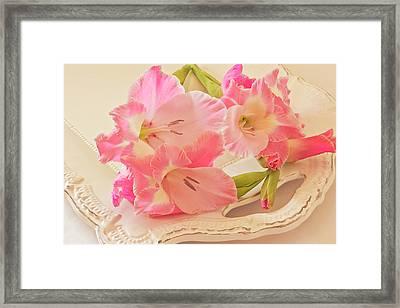 Gladiolas In Pink Framed Print by Sandra Foster