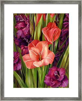 Gladiolus A Bee's View Framed Print by Nancy Tilles