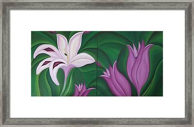 Gladiolus Carneus Framed Print by Marinella Owens