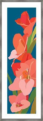 Gladiolus Framed Print by Marian Federspiel