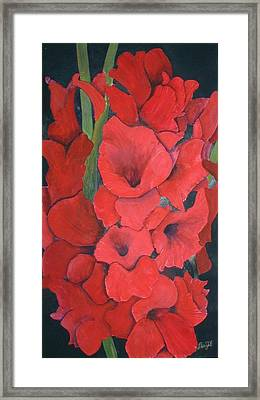 Glads Framed Print by Dwight Williams