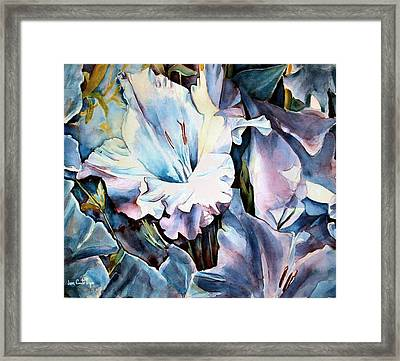 Glads White  Framed Print by June Conte  Pryor